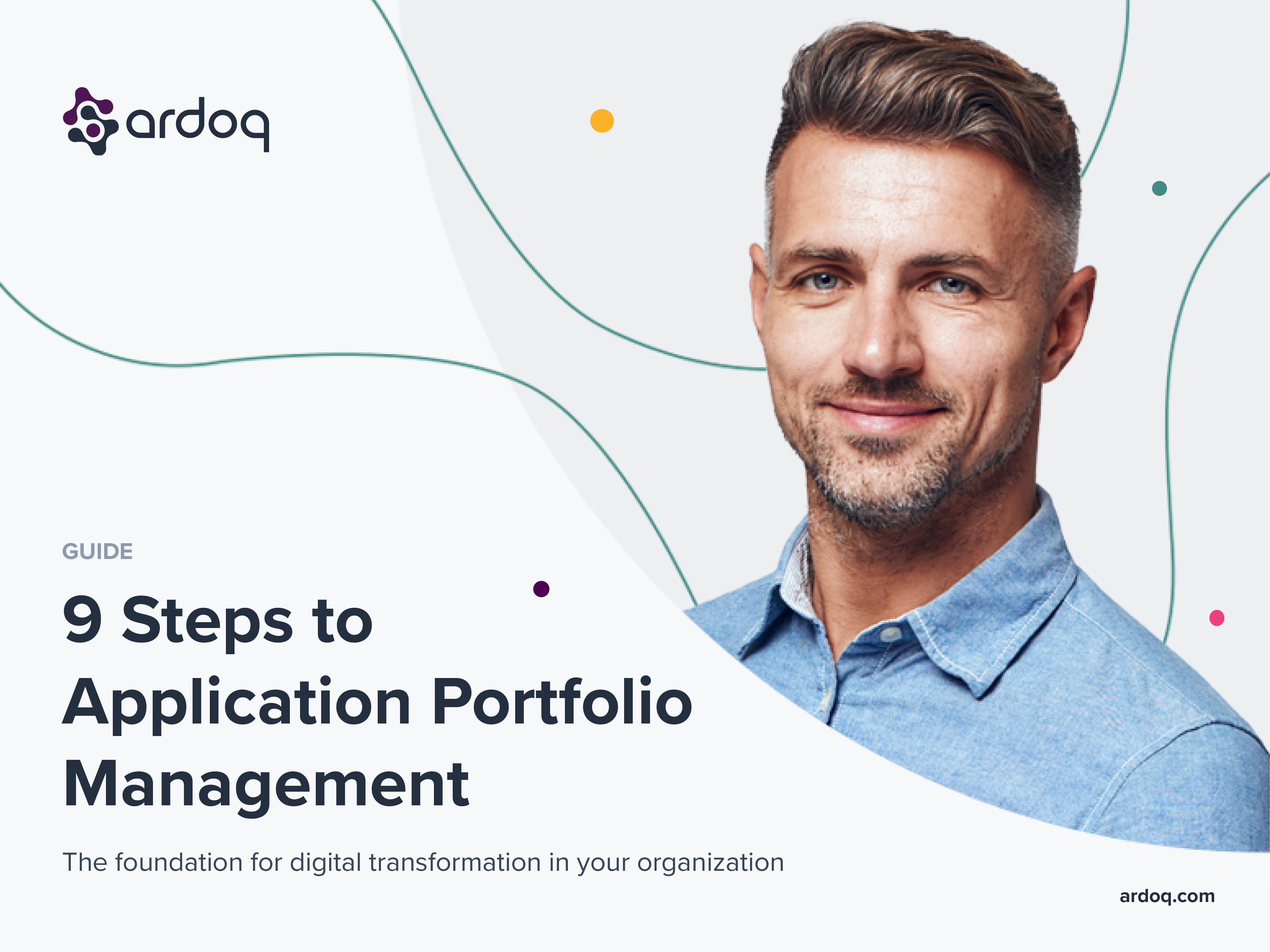 application portfolio management process